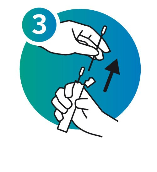 Sampling Procedure Icon 3