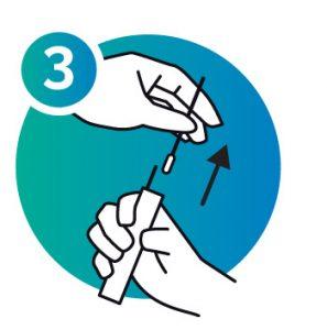 NorthGene Sampling Procedure Icon 3